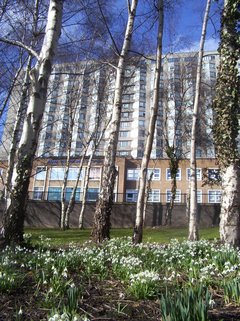 Hallamshire Hospital 0669