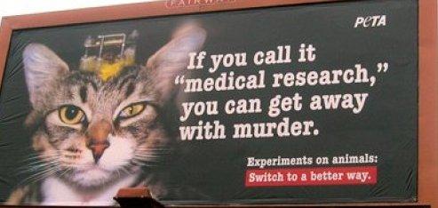 peta advert showing cat vivisection