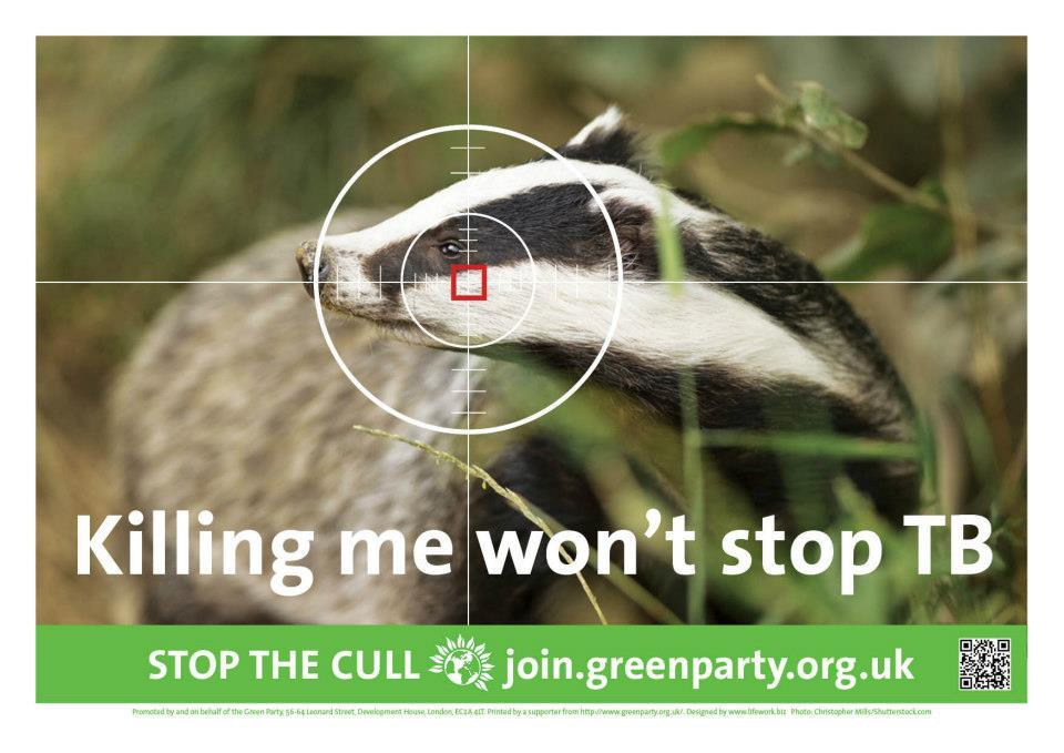 Killing me wont stop TB (badger cull poster)