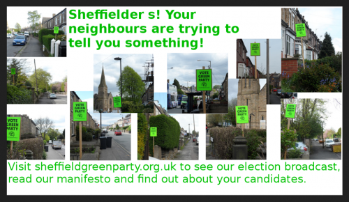 vote green placards