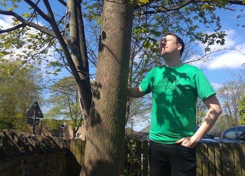 Save Sheffield trees